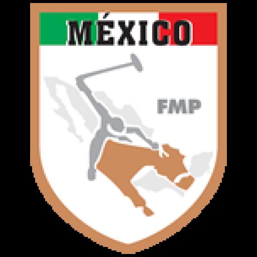Federación Mexicana de Polo